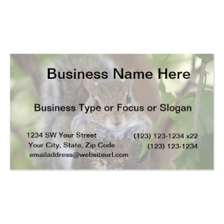 squirrel animal on log hanging out colour Double-Sided standard business cards (Pack of 100)