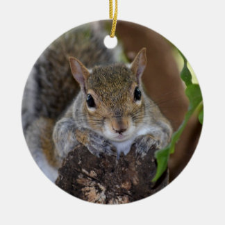 squirrel animal on log hanging out colour christmas ornament