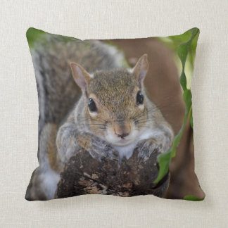 squirrel animal on log hanging out colour throw pillows