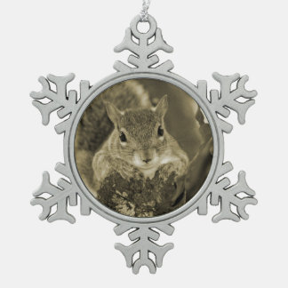squirrel animal on log hanging out sepia ornament