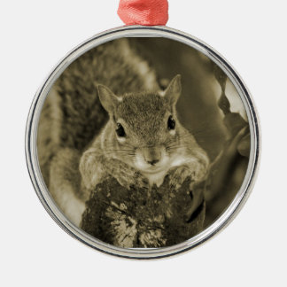 squirrel animal on log hanging out sepia christmas ornament