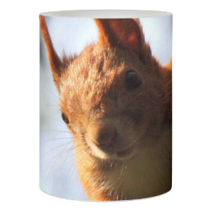 Squirrel Animal Wildlife Flameless Candle