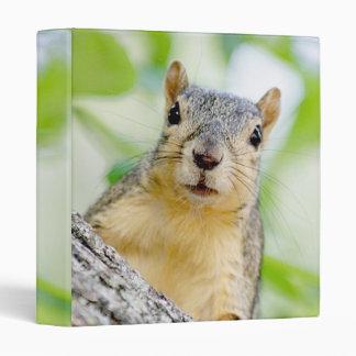 Squirrel at my window binder
