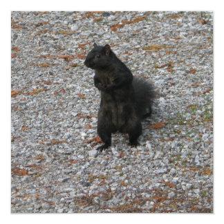 Squirrel Attitude 5.25x5.25 Square Paper Invitation Card