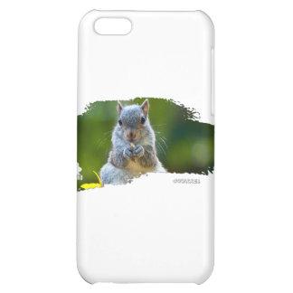 Squirrel Baby 01 iPhone 5C Cover