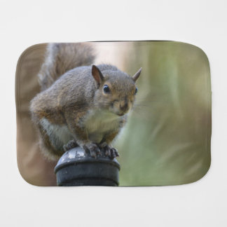 Squirrel Balancing Burp Cloth