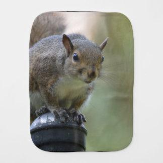 Squirrel Balancing Baby Burp Cloth