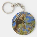 Squirrel Basic Round Button Keychain