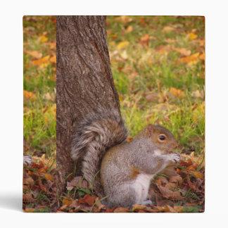 Squirrel Binder