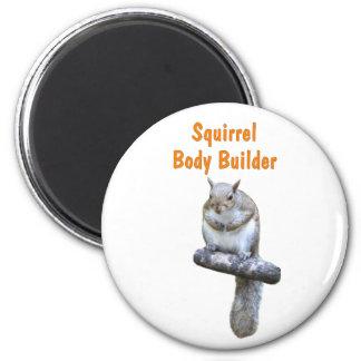 Squirrel Body Builder Fridge Magnets