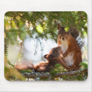 Squirrel Breastfeeding Mouse Pad