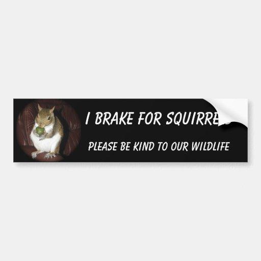 """Squirrel bumper sticker featuring """"Summer"""""""
