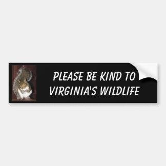 "Squirrel bumper sticker, featuring ""Summer"" Car Bumper Sticker"