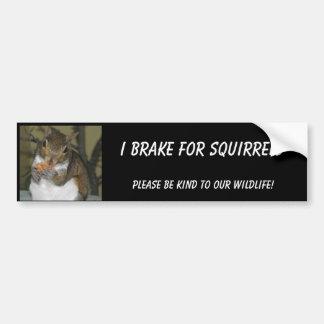 "Squirrel Bumper sticker featuring ""Summer"" Car Bumper Sticker"