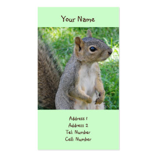 Squirrel Business Cards