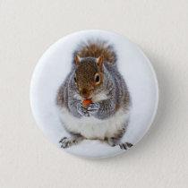 Squirrel Button