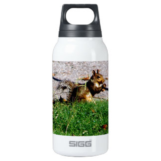 Squirrel By The Road Insulated Water Bottle