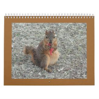 squirrel calendar