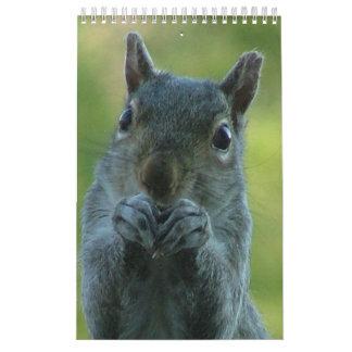 Squirrel Calendar 2011