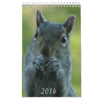 Squirrel Calendar 2014