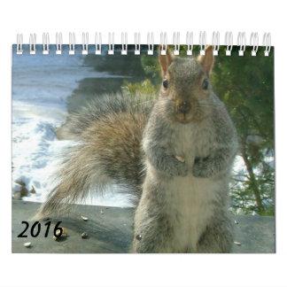 Squirrel Calendar 2016