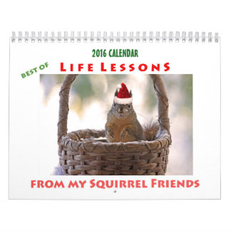 Squirrel Calendar 2016 Best of Life Lessons
