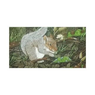 Squirrel Gallery Wrap Canvas