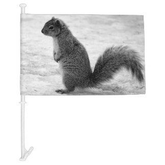 Squirrel Car Flag