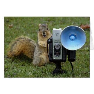 squirrel card large