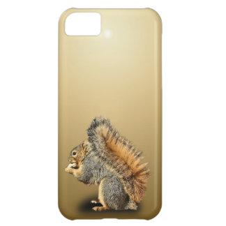 SQUIRREL iPhone 5C CASES