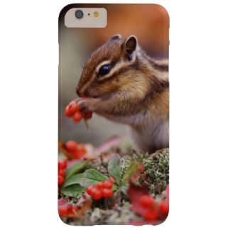 Squirrel Barely There iPhone 6 Plus Case