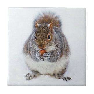 Squirrel Ceramic Tile