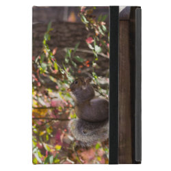 Powis iCase iPad Mini Case with Kickstand with Chow Chow Phone Cases design