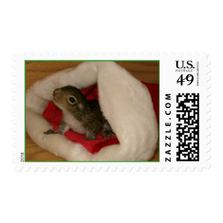 Squirrel Christmas Postage Stamp