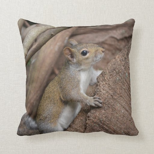 squirrel climbing tree cute animal color throw pillows Zazzle