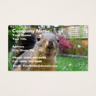 Squirrel Closeup Business Card