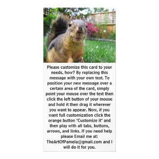 Squirrel Closeup Card