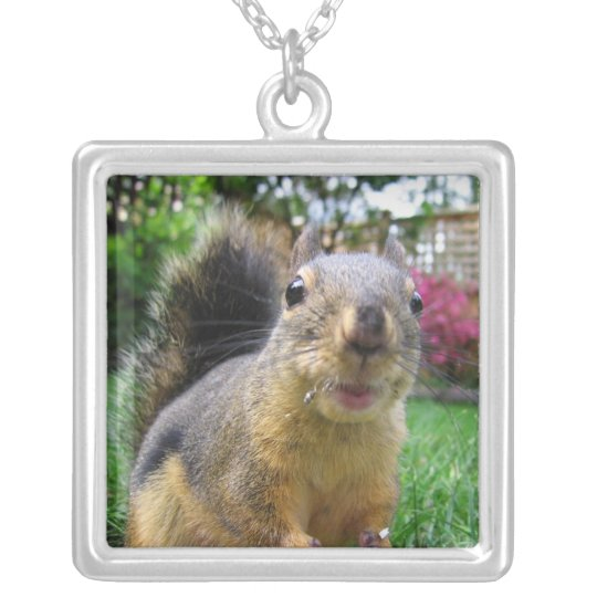 Squirrel Closeup Silver Plated Necklace