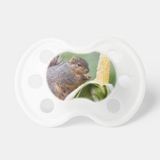 Squirrel Corn Pacifier