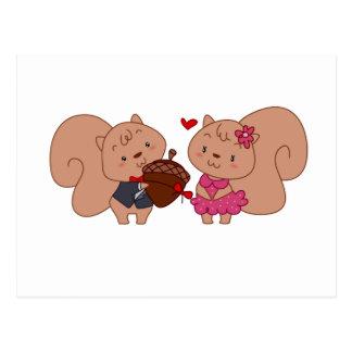 Squirrel Couple Postcard