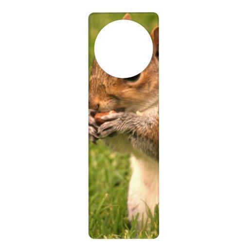 Squirrel Door Knob Hangers