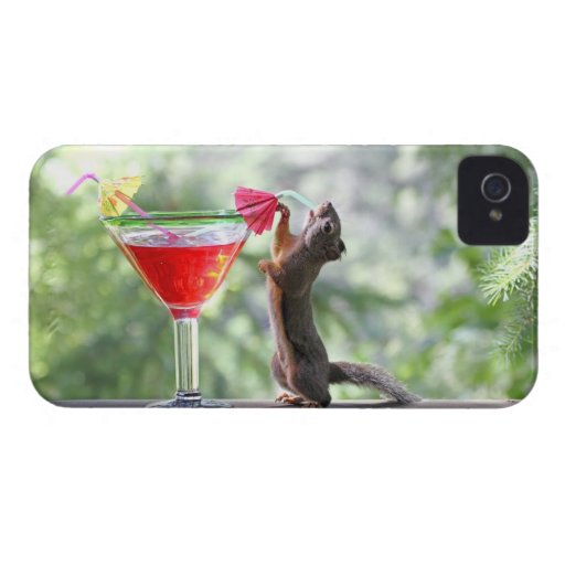 Squirrel Drinking a Cocktail at Happy Hour Case-Mate iPhone 4 Case