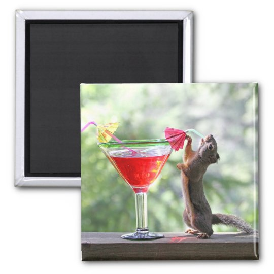 Squirrel Drinking a Cocktail at Happy Hour Magnet