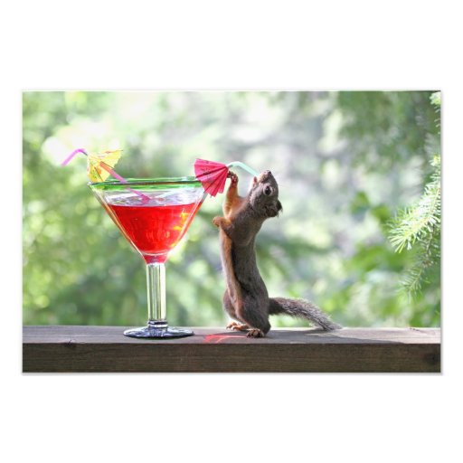 Squirrel Drinking a Cocktail at Happy Hour Photo Art