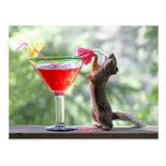 Squirrel Drinking a Cocktail at Happy Hour Post Cards