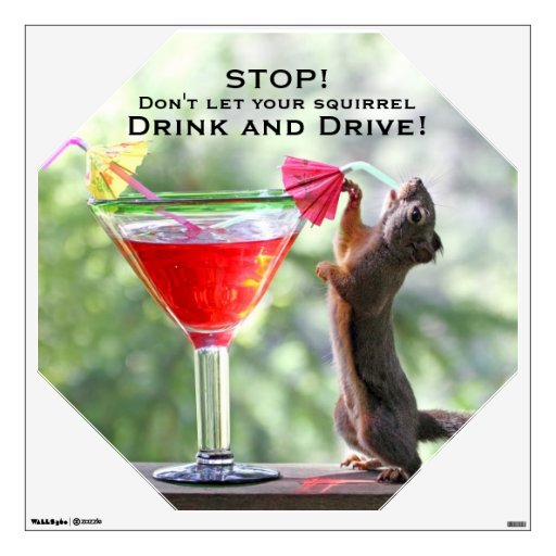 Squirrel Drinking a Cocktail at Happy Hour Room Graphics