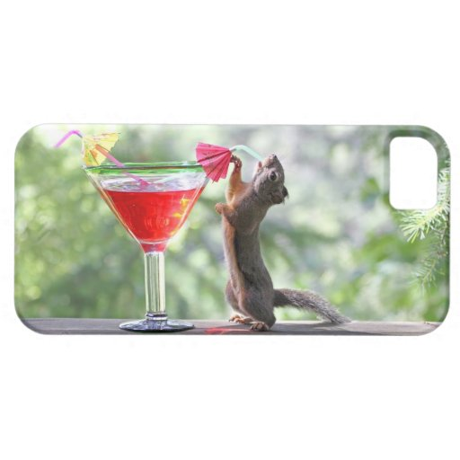 Squirrel Drinking a Cocktail iPhone 5 Case