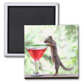 Squirrel Drinking a Cocktail Magnets