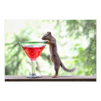 Squirrel Drinking a Cocktail Photo Print