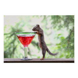 Squirrel Drinking a Cocktail Poster
